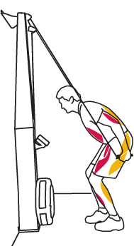 SkiErg Technique 3